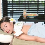 aromatic_herbal_pack_bed_image1